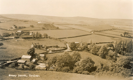 Moneybrook Farm and beyond in 1958