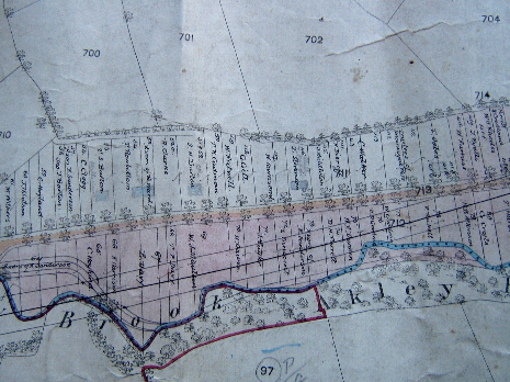 Totley Brook Estate allotment plan 1876, western part
