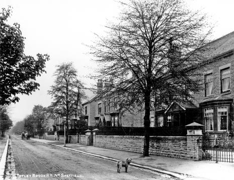 Totley Brook Road looking west from Kengarth (no. 90)