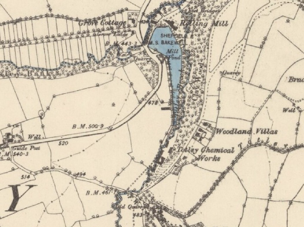 Ordnance Survey Map 1876