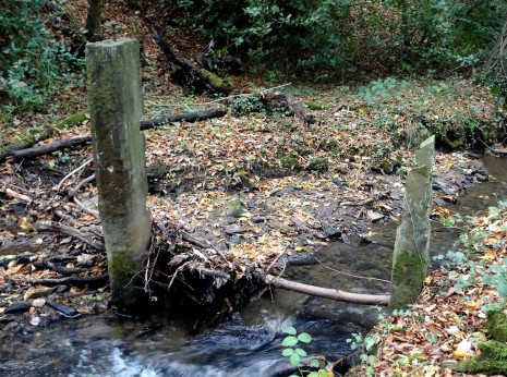 Standing stones in Totley Brook