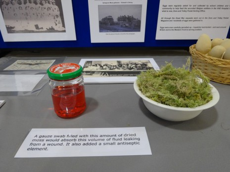 Sphagnum moss stand at our World War 1 exhibition, November 2014