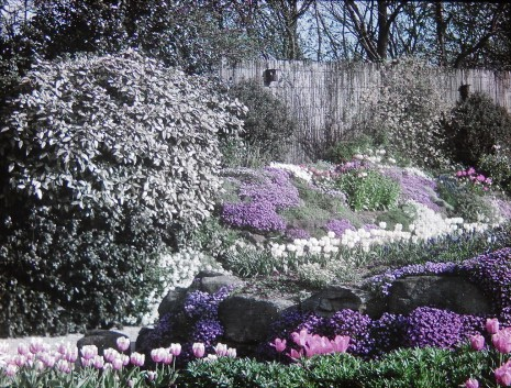 Totley Hall rock garden